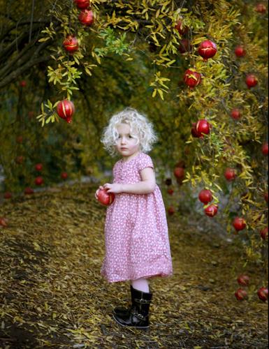 hussey pomegranite children fall